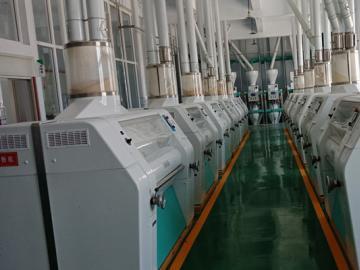 200 ton per day wheat flour milling machine