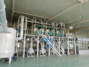 50ton per day Maize/Corn flour milling machine