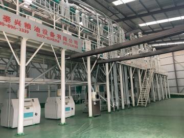 100ton per day maize corn milling plant