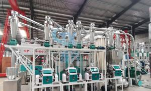 15TPD small industrial wheat grinder flour mill machine plant manufacturers